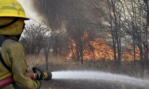 Controlan en forma parcial un incendio forestal desarrollado a la vera de una autopista en Córdoba