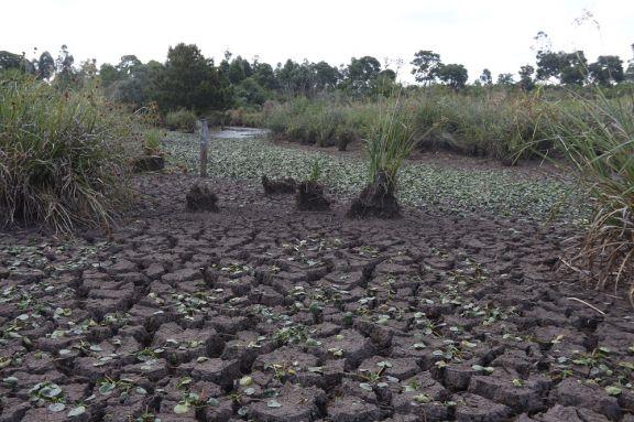 El déficit en el promedio de lluvias seguirá al menos hasta otoño de 2022